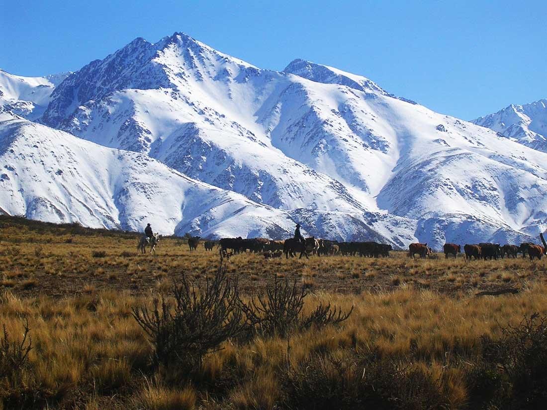 Cordón del Plata, cordillera frontal, provincia de Mendoza.