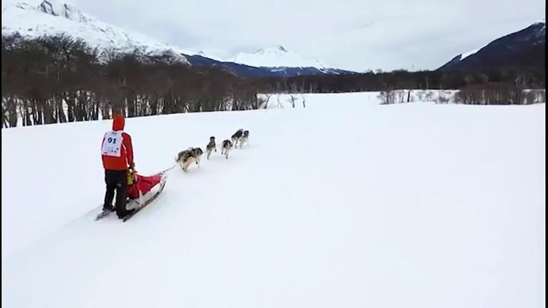 """""""Me vine con dos perros a Ushuaia donde empecé el equipo Tres Cuartos, mi criadero""""."""