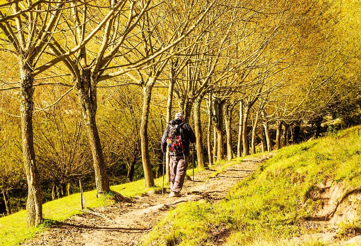 De Tafí del Valle a El Siambón, un atractivo trekking en la yunga tucumana.